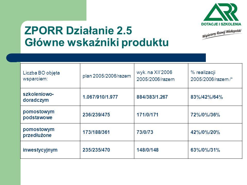 ZPORR Działanie 2.5 Główne wskaźniki produktu Liczba BO objęta wsparciem: plan 2005/2006/razem wyk. na XII2006 2005/2006/razem % realizacji 2005/2006/