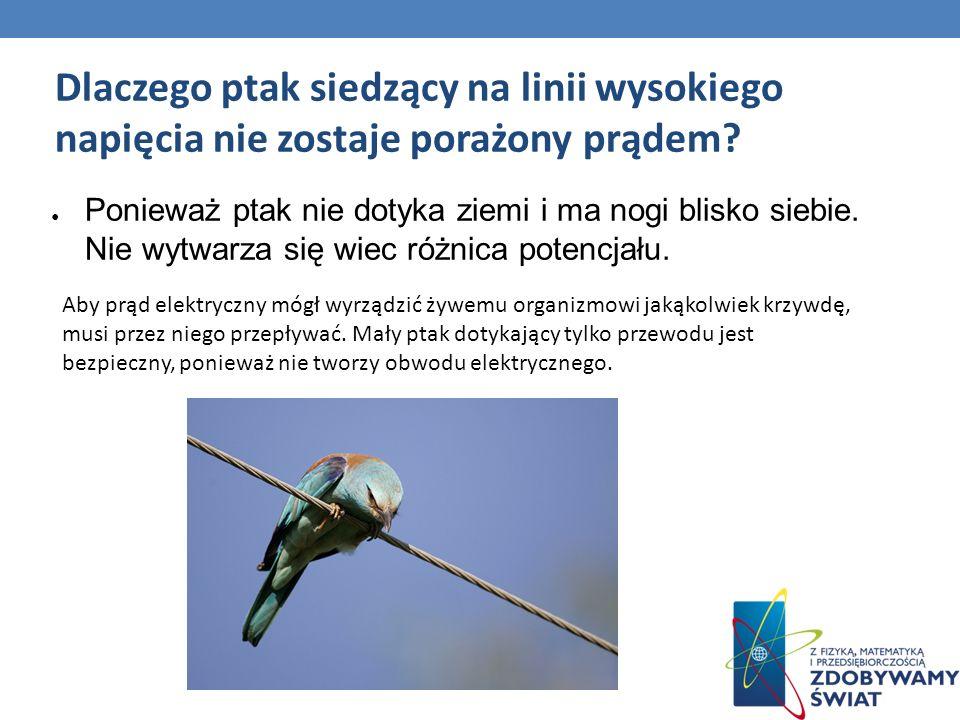 Dlaczego ptak siedzący na linii wysokiego napięcia nie zostaje porażony prądem? Ponieważ ptak nie dotyka ziemi i ma nogi blisko siebie. Nie wytwarza s