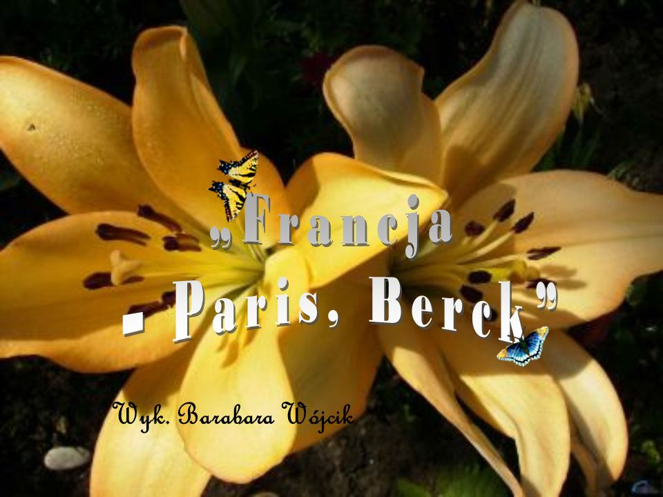 Francja - Paris, Berck - wyk. Barbara Wójcik kl.III c Francja - Berck