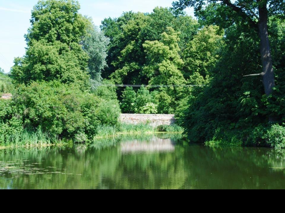 Wzdłuż rzeki Oława stały warownie tworząc naturalną zaporę obronną księstwa brzeskiego. Jedną z takich warowni był położony w pobliżu rzeki Oława, zam
