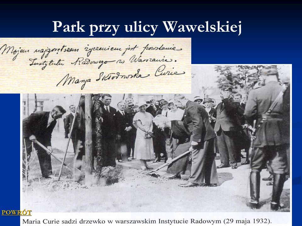 Park przy ulicy Wawelskiej POWRÓT