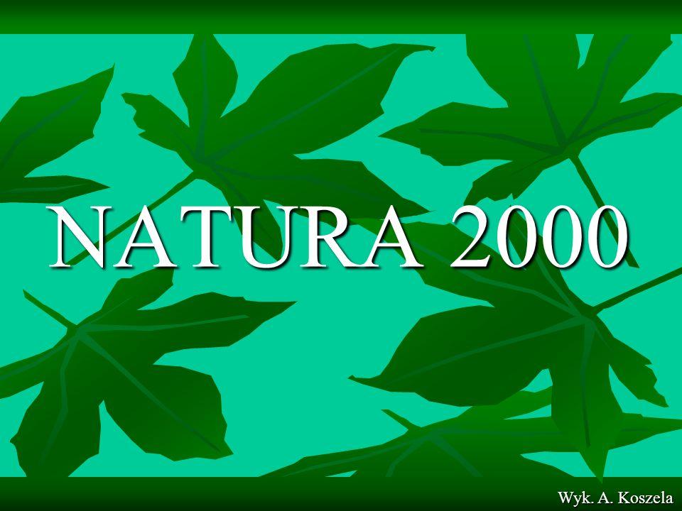 NATURA 2000 Wyk. A. Koszela