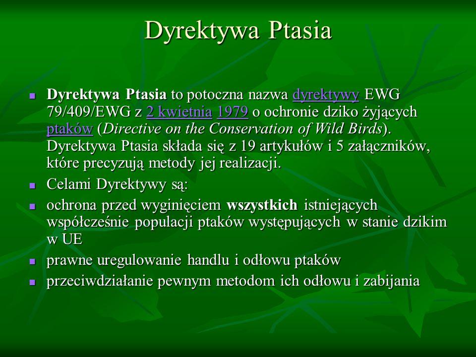 Dyrektywa Ptasia Dyrektywa Ptasia to potoczna nazwa dyrektywy EWG 79/409/EWG z 2 kwietnia 1979 o ochronie dziko żyjących ptaków (Directive on the Cons