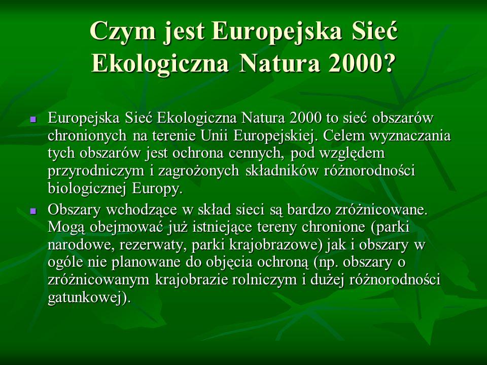 Czym jest Europejska Sieć Ekologiczna Natura 2000? Europejska Sieć Ekologiczna Natura 2000 to sieć obszarów chronionych na terenie Unii Europejskiej.