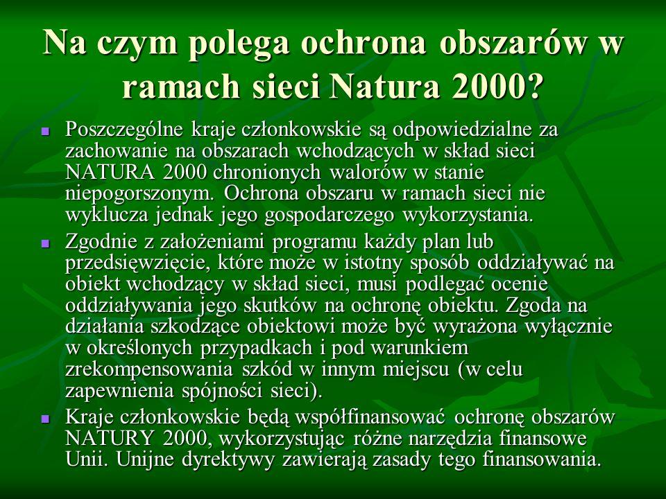 Na czym polega ochrona obszarów w ramach sieci Natura 2000? Poszczególne kraje członkowskie są odpowiedzialne za zachowanie na obszarach wchodzących w