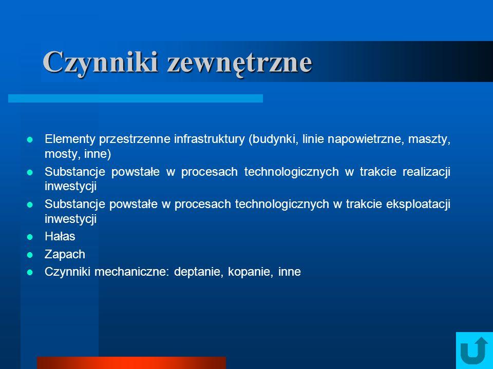 Elementy przestrzenne infrastruktury (budynki, linie napowietrzne, maszty, mosty, inne) Substancje powstałe w procesach technologicznych w trakcie rea