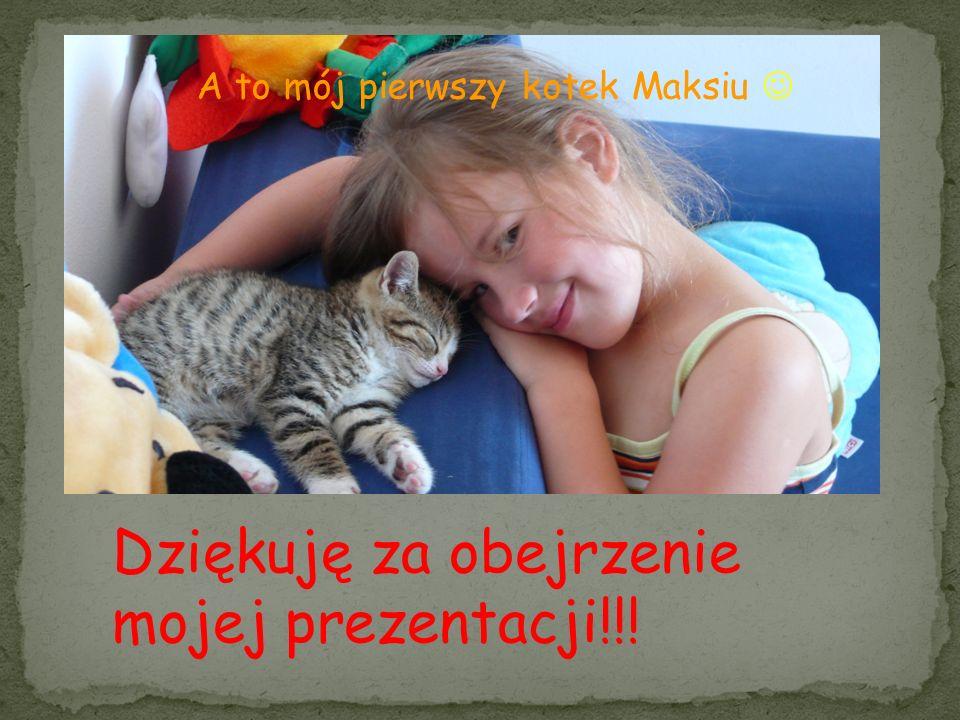 A to mój pierwszy kotek Maksiu Dziękuję za obejrzenie mojej prezentacji!!!