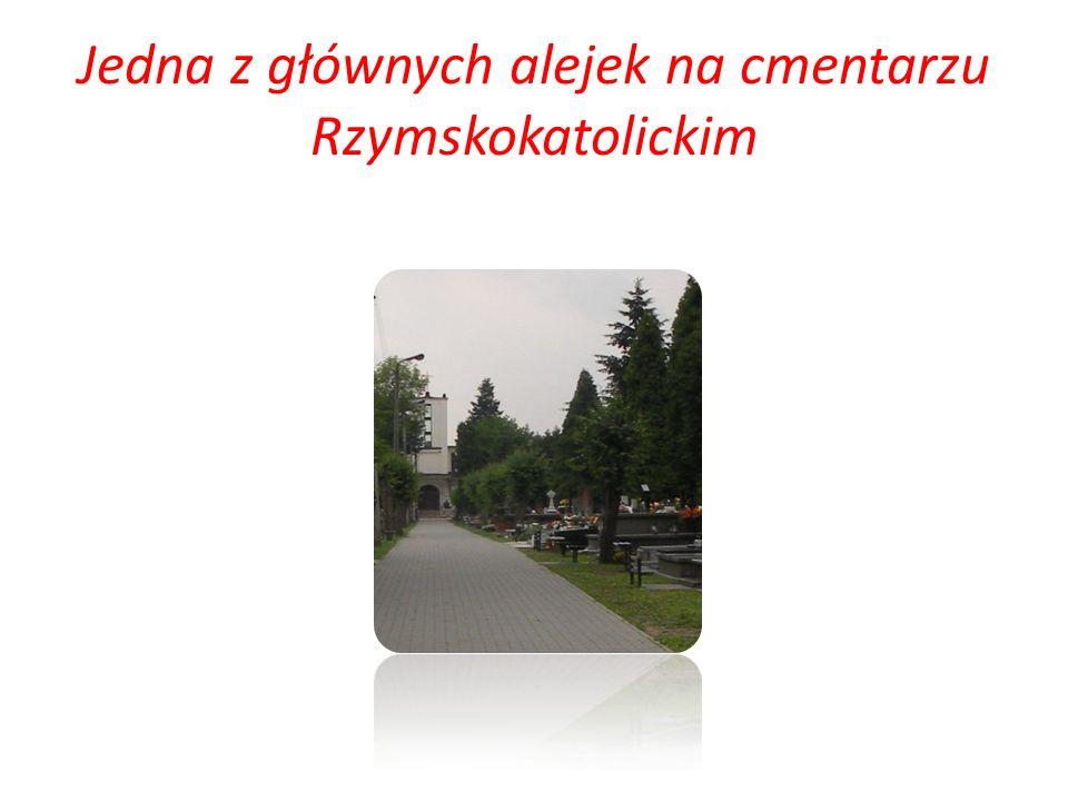 PREZENTACJĘ WYKONAŁA ALEKSANDRA KUBALA Z KLASY 2B