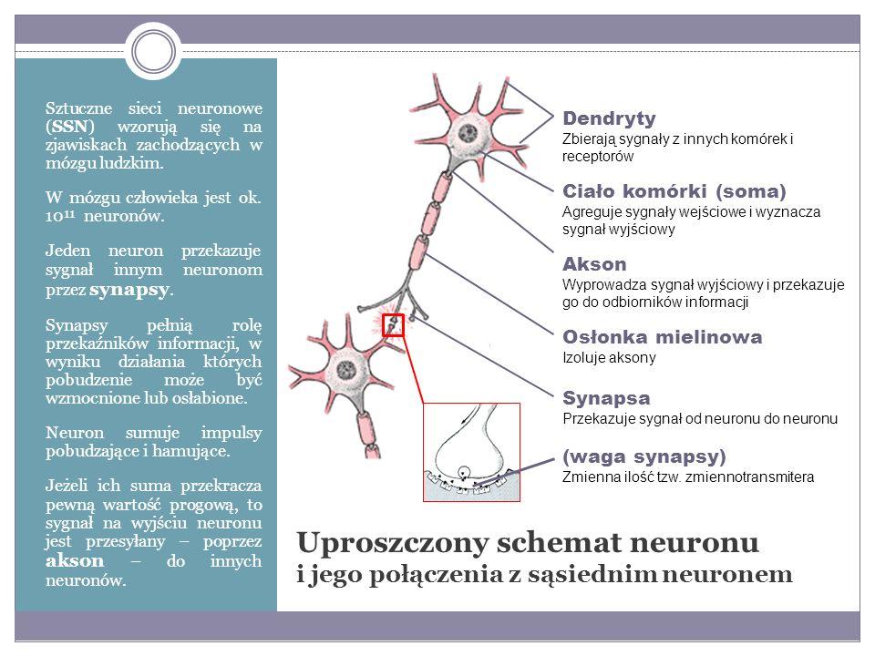Formuła opisująca działanie neuronu wyraża się wzorem: funkcja aktywacji : progowa unipolarna progowa bipolarna sigmoidalna unipolarna tangens hiperboliczny Model neuronu n – liczba wejść w neuronie x 1, x 2, …, x n – sygnały wejściowe; x = [x 1, x 2, …, x n ] w 1, w 2, …, w n – wagi synaptyczne; w = [w 1, w 2, …, w n ] y – wartość wyjściowa neuronu b – wartość progowa (biast) f – funkcja aktywacji
