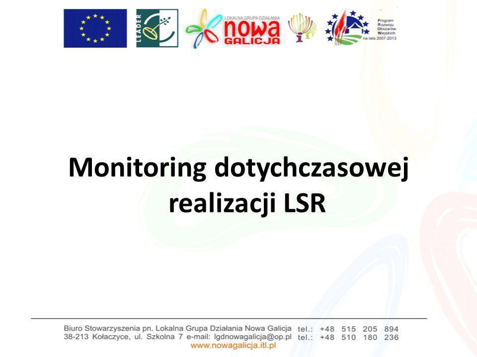 Monitoring dotychczasowej realizacji LSR