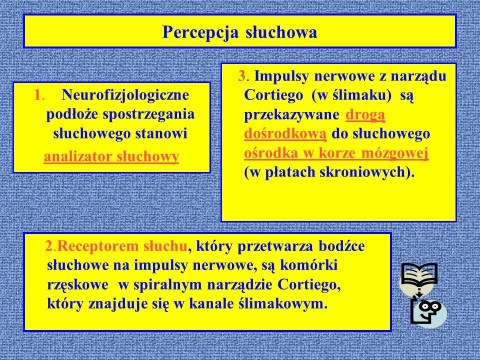 Percepcja słuchowa 1. Neurofizjologiczne podłoże spostrzegania słuchowego stanowi analizator słuchowy 3. Impulsy nerwowe z narządu Cortiego (w ślimaku