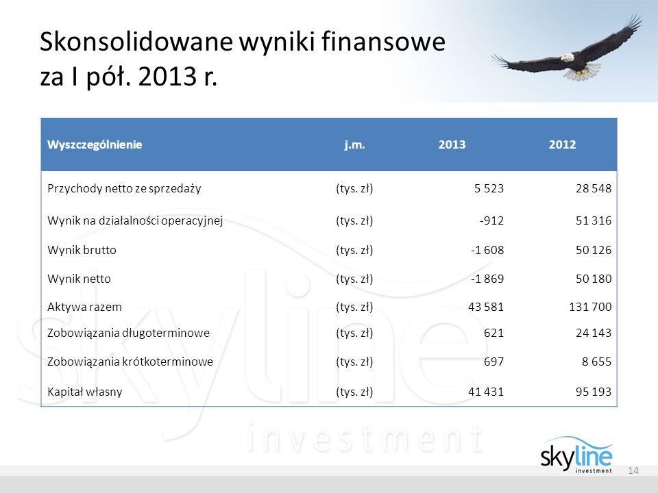 Skonsolidowane wyniki finansowe za I pół. 2013 r.
