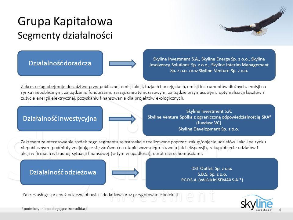 Grupa Kapitałowa Segmenty działalności 4 Działalność doradcza Skyline Investment S.A., Skyline Energy Sp. z o.o., Skyline Insolvency Solutions Sp. z o