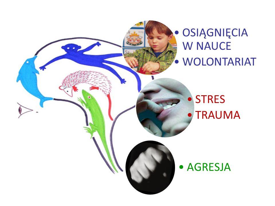 OSIĄGNIĘCIA W NAUCE WOLONTARIAT STRES TRAUMA AGRESJA