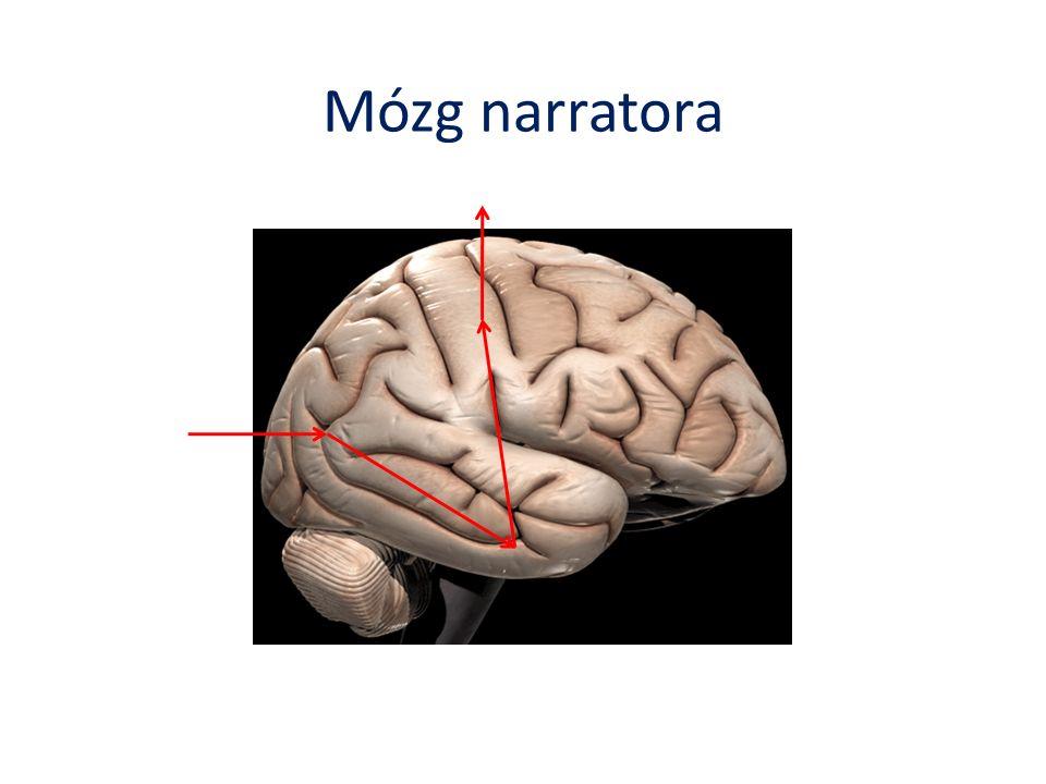 Mózg narratora