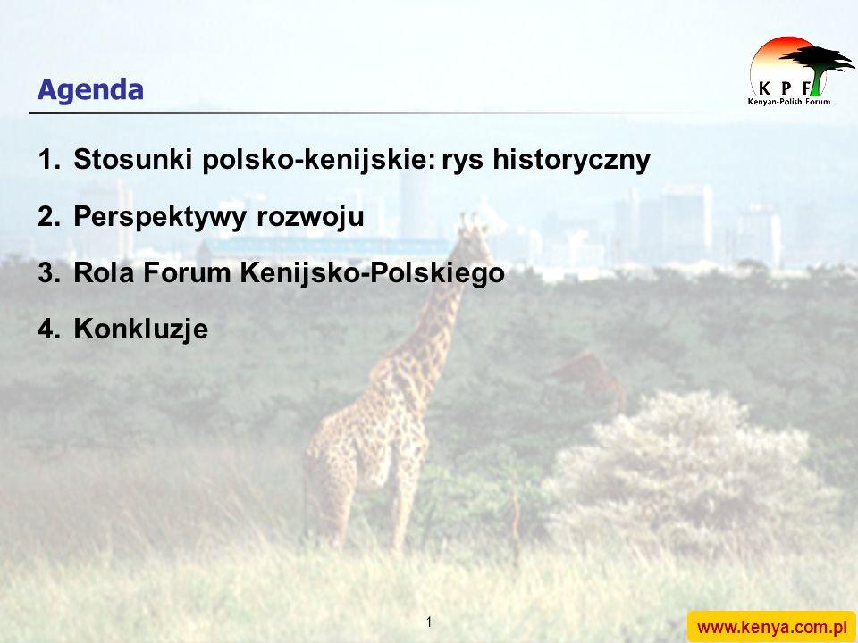 Kenyan-Polish Forum Intensyfikacja bilateralnych stosunków między Kenią a Polską (studium przypadku) www.kenya.com.pl Konferencja Afryka-Kontynent XXI