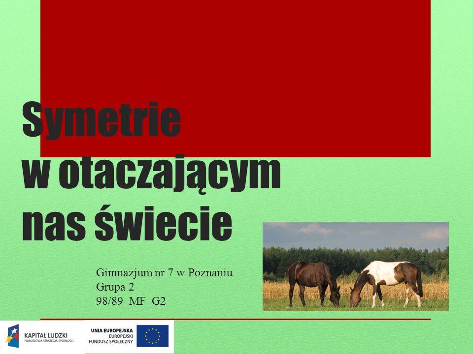 Symetrie w otaczającym nas świecie Gimnazjum nr 7 w Poznaniu Grupa 2 98/89_MF_G2