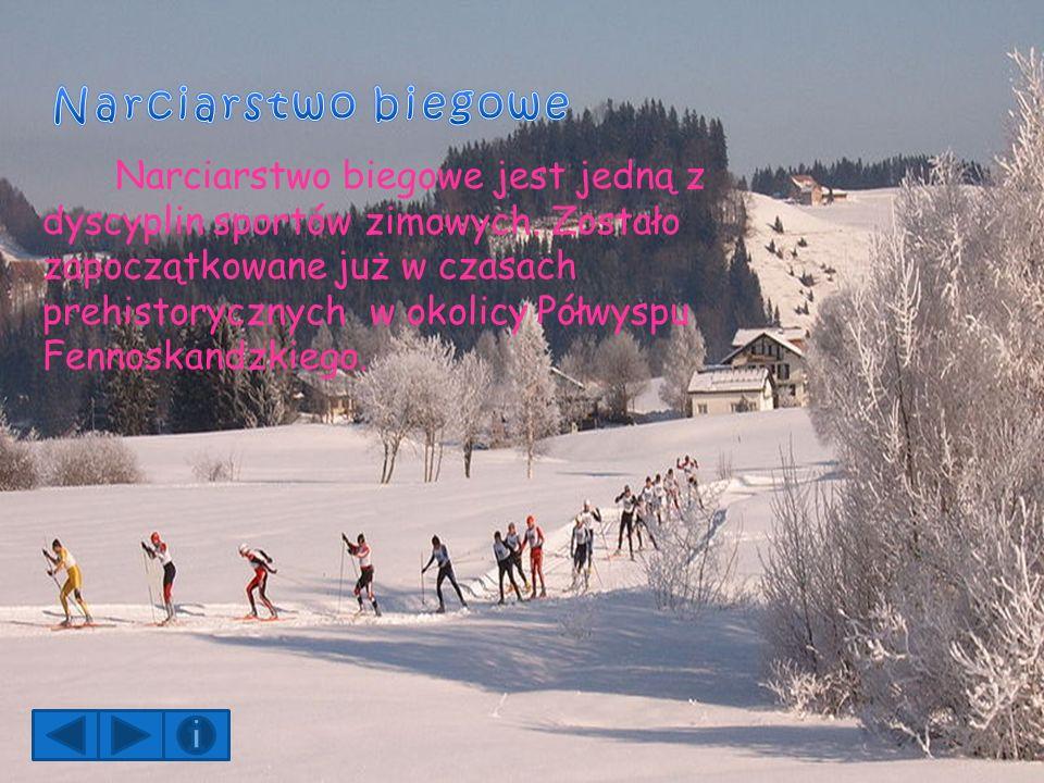 Narciarstwo biegowe jest jedną z dyscyplin sportów zimowych.