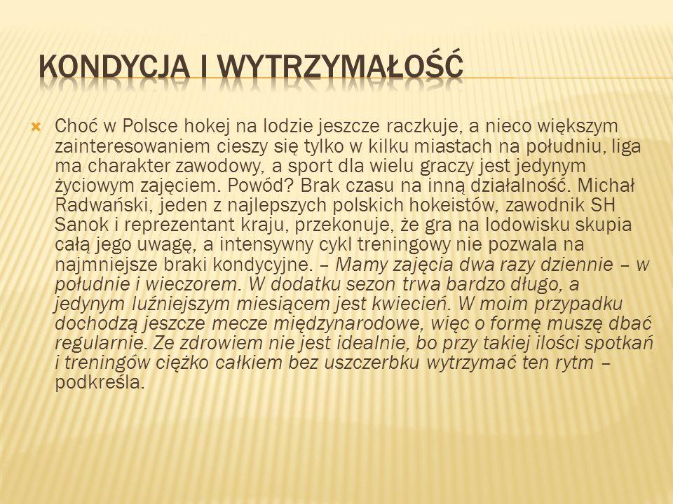 Choć w Polsce hokej na lodzie jeszcze raczkuje, a nieco większym zainteresowaniem cieszy się tylko w kilku miastach na południu, liga ma charakter zaw