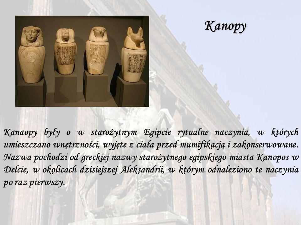 Kanaopy były o w starożytnym Egipcie rytualne naczynia, w których umieszczano wnętrzności, wyjęte z ciała przed mumifikacją i zakonserwowane. Nazwa po
