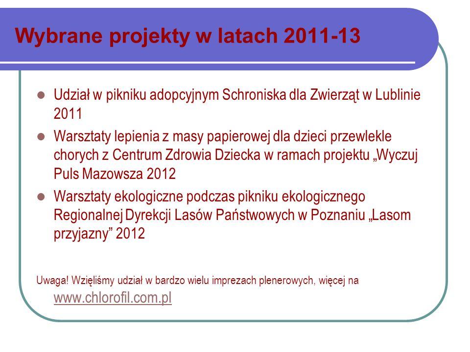 Wybrane projekty w latach 2011-13 Udział w pikniku adopcyjnym Schroniska dla Zwierząt w Lublinie 2011 Warsztaty lepienia z masy papierowej dla dzieci