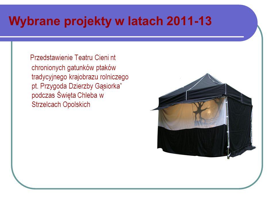 Wybrane projekty w latach 2011-13 Przedstawienie Teatru Cieni nt chronionych gatunków ptaków tradycyjnego krajobrazu rolniczego pt. Przygoda Dzierzby