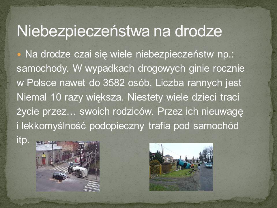 Na drodze czai się wiele niebezpieczeństw np.: samochody. W wypadkach drogowych ginie rocznie w Polsce nawet do 3582 osób. Liczba rannych jest Niemal