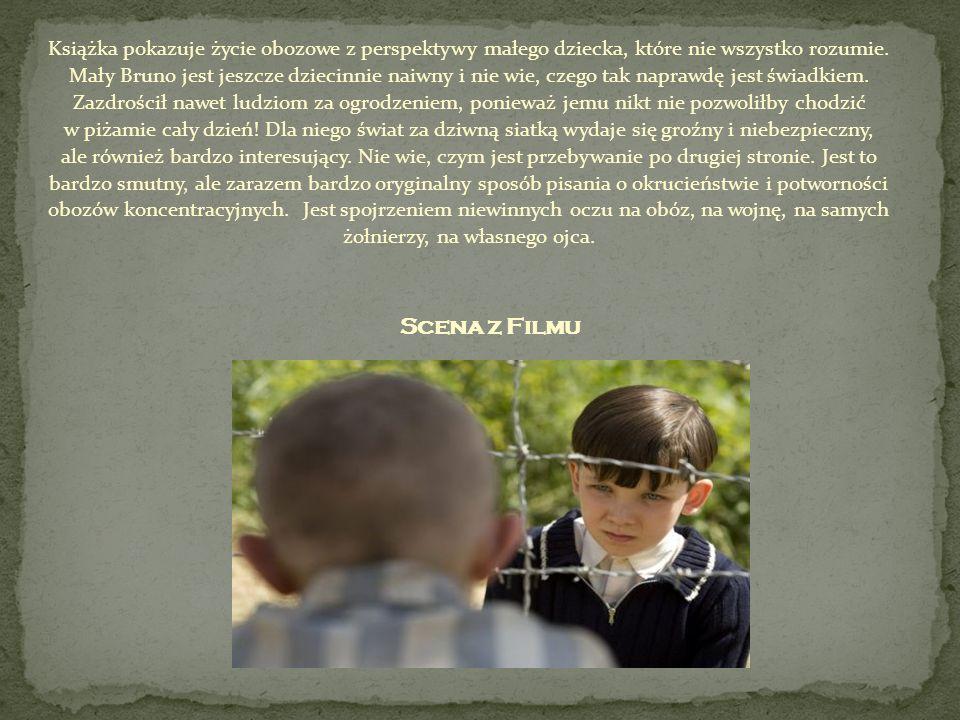 Książka pokazuje życie obozowe z perspektywy małego dziecka, które nie wszystko rozumie. Mały Bruno jest jeszcze dziecinnie naiwny i nie wie, czego ta
