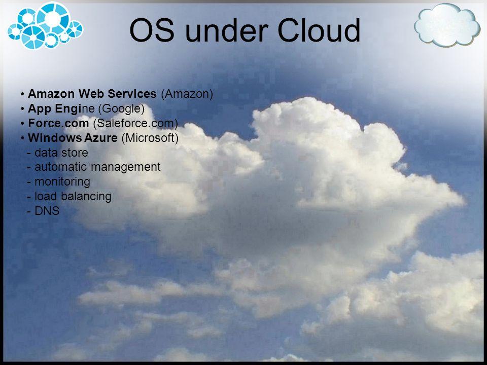 OS under Cloud Amazon Web Services (Amazon) App Engine (Google) Force.com (Saleforce.com) Windows Azure (Microsoft) - data store - automatic managemen