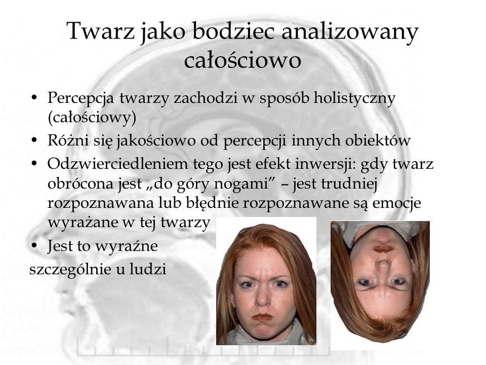 Twarz jako bodziec analizowany całościowo Percepcja twarzy zachodzi w sposób holistyczny (całościowy) Różni się jakościowo od percepcji innych obiektó