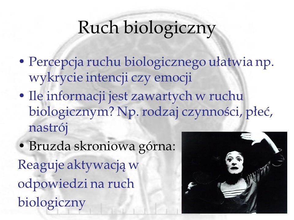 Ruch biologiczny Percepcja ruchu biologicznego ułatwia np. wykrycie intencji czy emocji Ile informacji jest zawartych w ruchu biologicznym? Np. rodzaj