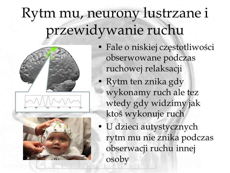 Rytm mu, neurony lustrzane i przewidywanie ruchu Fale o niskiej częstotliwości obserwowane podczas ruchowej relaksacji Rytm ten znika gdy wykonamy ruch ale tez wtedy gdy widzimy jak ktoś wykonuje ruch U dzieci autystycznych rytm mu nie znika podczas obserwacji ruchu innej osoby