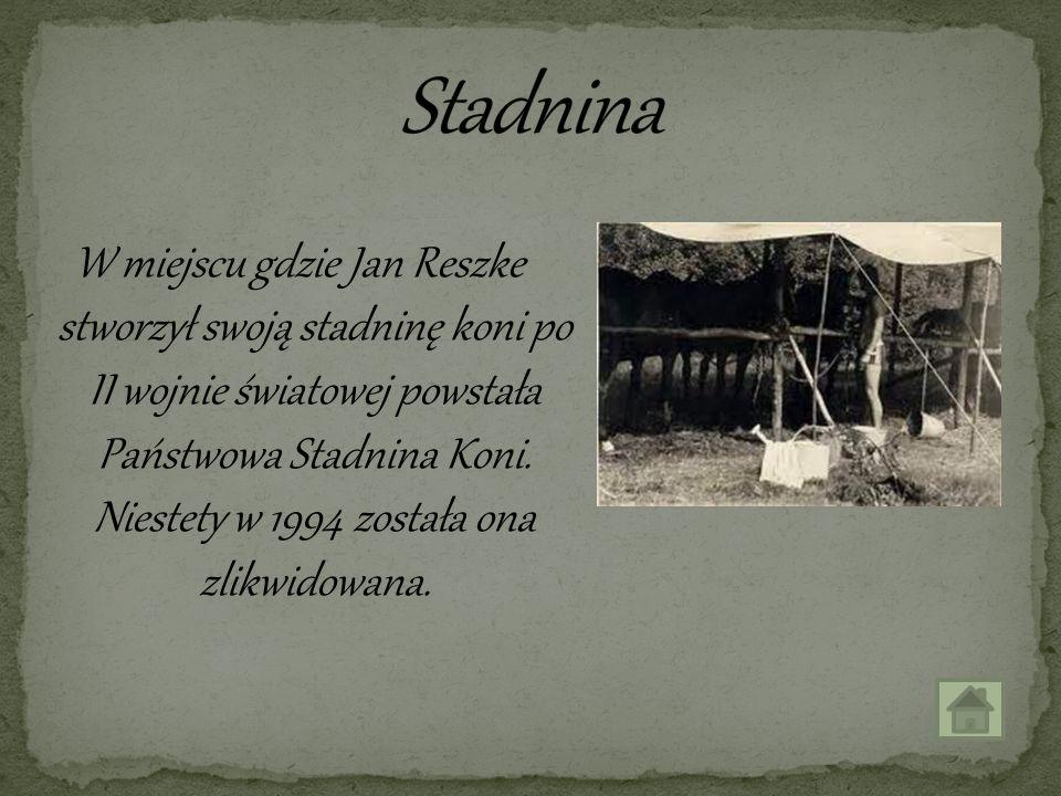 W miejscu gdzie Jan Reszke stworzył swoją stadninę koni po II wojnie światowej powstała Państwowa Stadnina Koni. Niestety w 1994 została ona zlikwidow