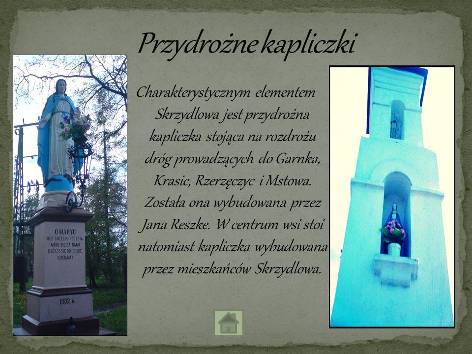 Charakterystycznym elementem Skrzydlowa jest przydrożna kapliczka stojąca na rozdrożu dróg prowadzących do Garnka, Krasic, Rzerzęczyc i Mstowa. Został