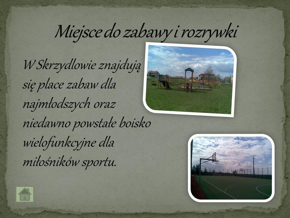 W Skrzydlowie znajdują się place zabaw dla najmłodszych oraz niedawno powstałe boisko wielofunkcyjne dla miłośników sportu.