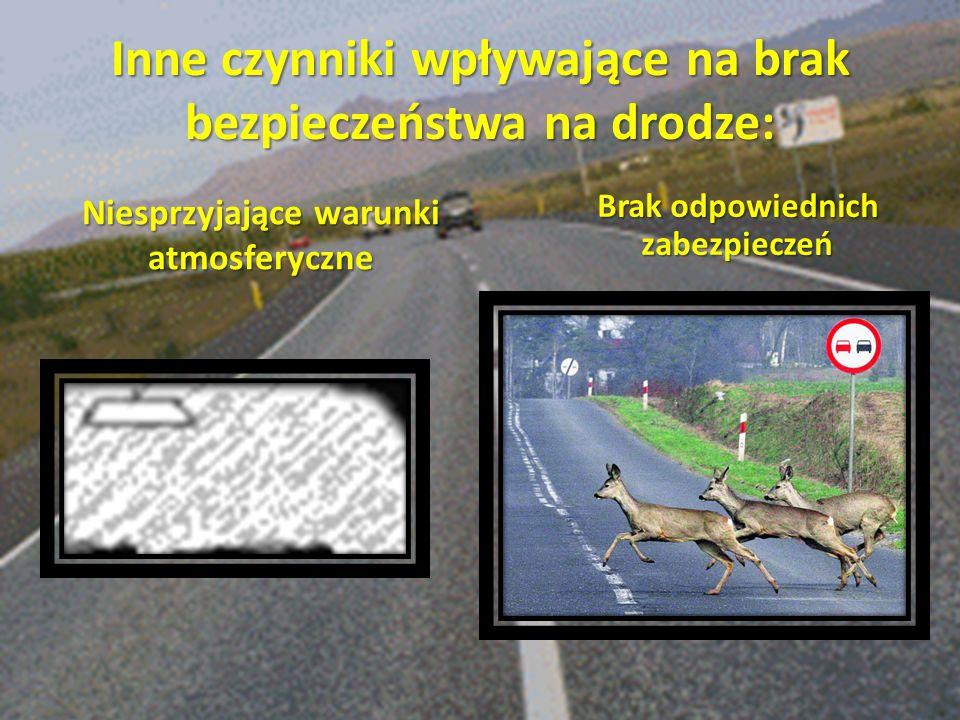 Inne czynniki wpływające na brak bezpieczeństwa na drodze: Niesprzyjające warunki atmosferyczne Brak odpowiednich zabezpieczeń