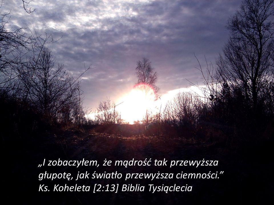 I zobaczyłem, że mądrość tak przewyższa głupotę, jak światło przewyższa ciemności. Ks. Koheleta [2:13] Biblia Tysiąclecia