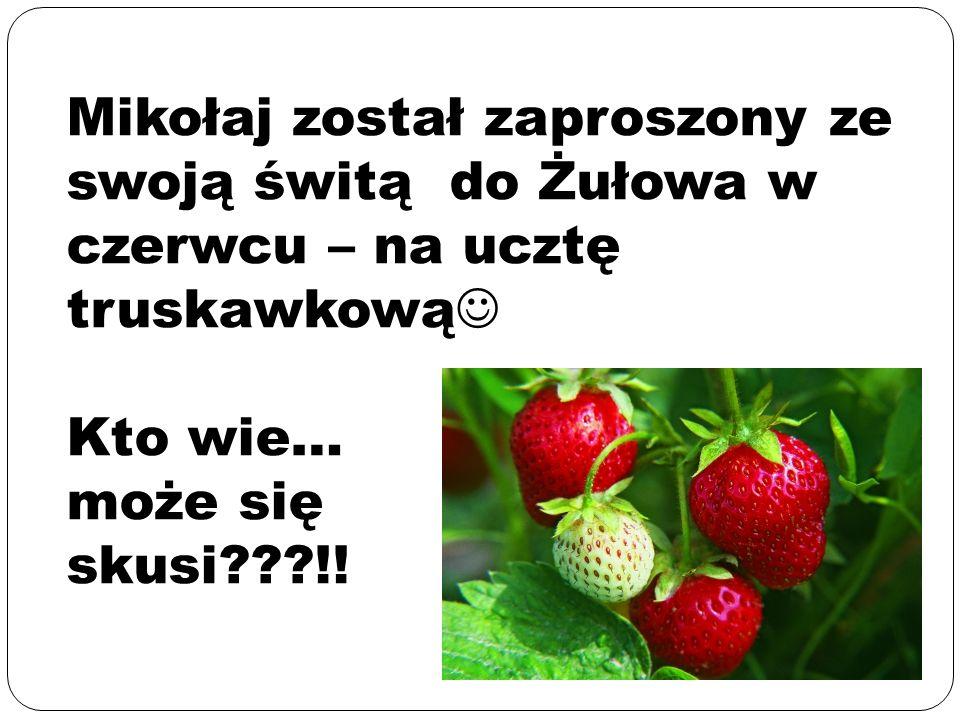 Mikołaj został zaproszony ze swoją świtą do Żułowa w czerwcu – na ucztę truskawkową Kto wie… może się skusi !!