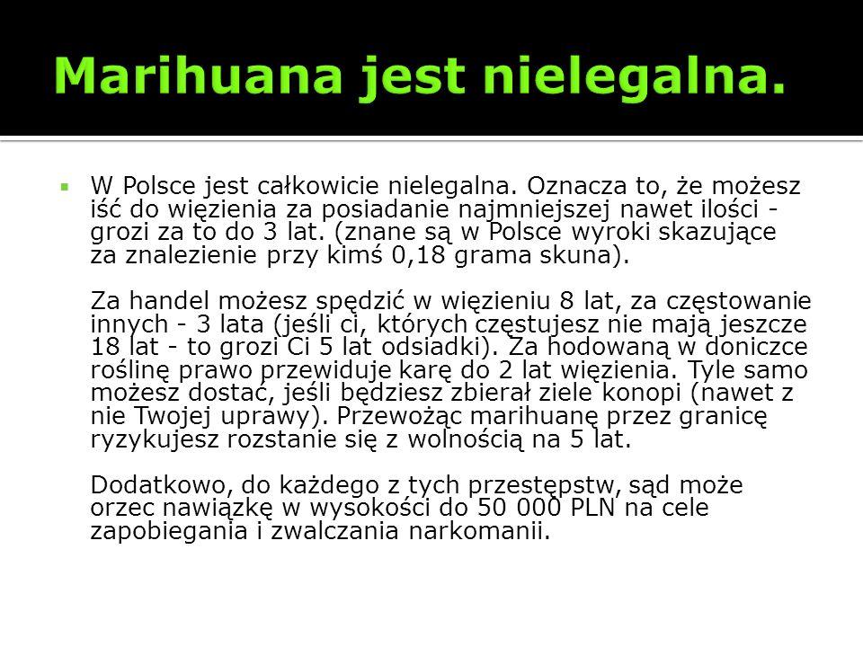 W Polsce jest całkowicie nielegalna. Oznacza to, że możesz iść do więzienia za posiadanie najmniejszej nawet ilości - grozi za to do 3 lat. (znane są