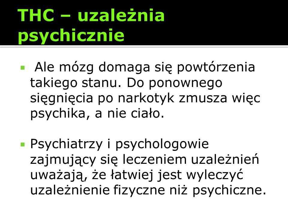 Ale mózg domaga się powtórzenia takiego stanu. Do ponownego sięgnięcia po narkotyk zmusza więc psychika, a nie ciało. Psychiatrzy i psychologowie zajm