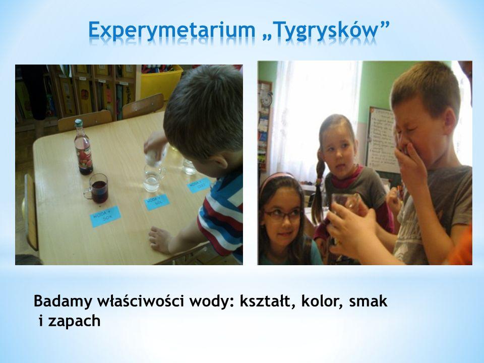 * GRUPA II ( 3-, 4-latki ) - Dzieci i rodzice uczestniczyli w IV KAJAKOWEJ INTEGRACYJNEJ MAJÓWCE RODZINNEJ propaguj ą cej zdrowy styl ż ycia.