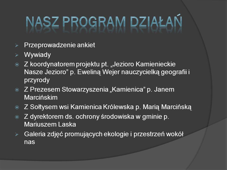 Przeprowadzenie ankiet Wywiady Z koordynatorem projektu pt.