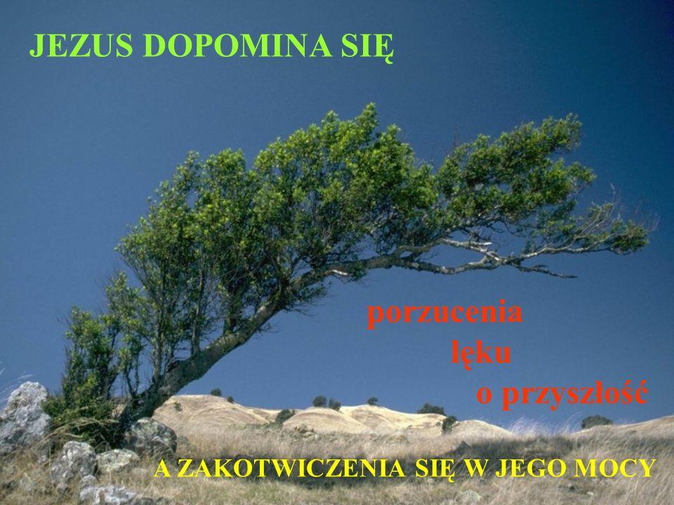 JEZUS DOPOMINA SIĘ porzucenia lęku o przyszłość A ZAKOTWICZENIA SIĘ W JEGO MOCY