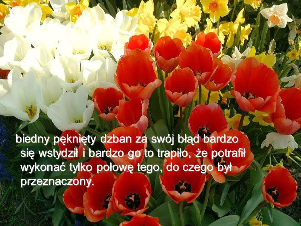 Życzę miłego dnia i nie zapominajcie kosztować woni i piękna kwiatów na Waszej stronie ścieżki.