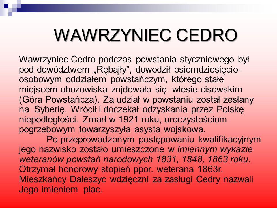 WAWRZYNIEC CEDRO Wawrzyniec Cedro podczas powstania styczniowego był pod dowództwem Rębajły, dowodził osiemdziesięcio- osobowym oddziałem powstańczym,