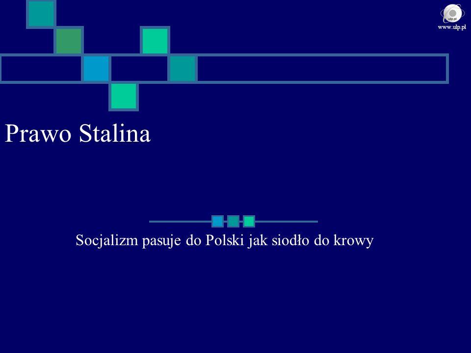 Prawo Stalina Socjalizm pasuje do Polski jak siodło do krowy www.ulp.pl