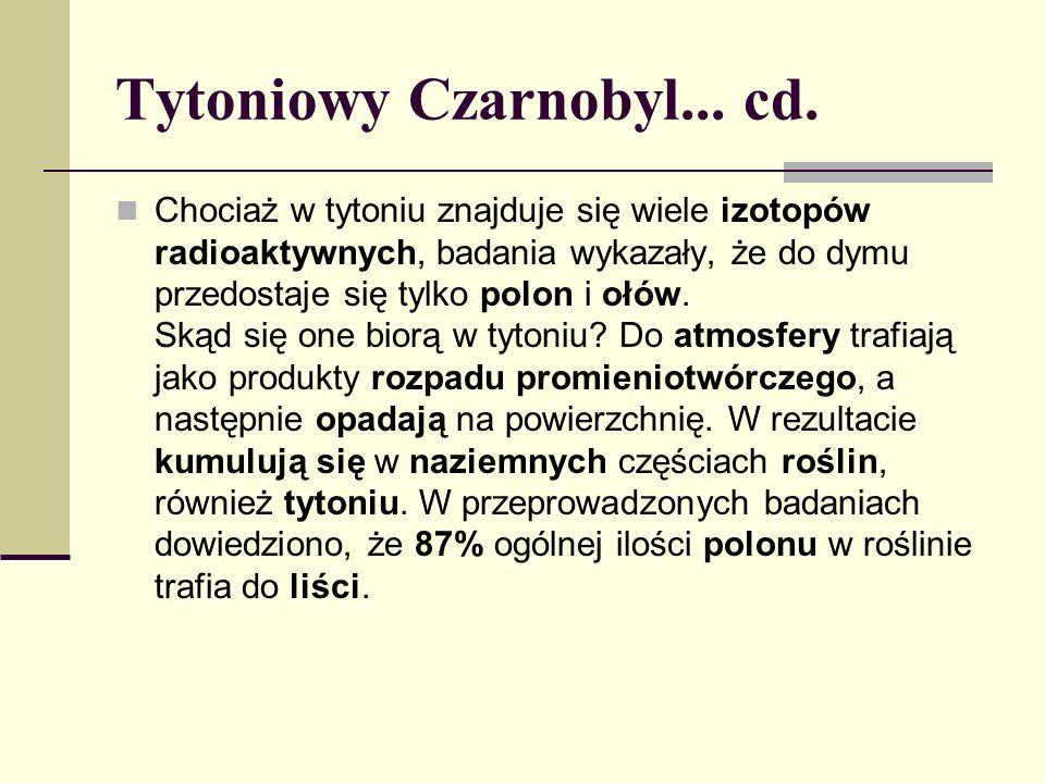 Tytoniowy Czarnobyl... cd. Chociaż w tytoniu znajduje się wiele izotopów radioaktywnych, badania wykazały, że do dymu przedostaje się tylko polon i oł