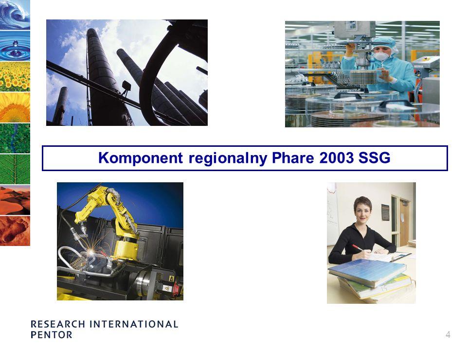 15 Trafność Bezpośrednie cele komponentu regionalnego odpowiadały kluczowym potrzebom sektora MSP….