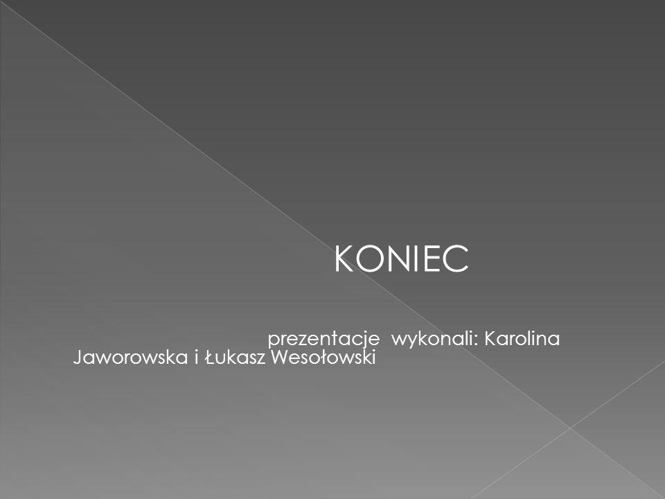 KONIEC prezentacje wykonali: Karolina Jaworowska i Łukasz Wesołowski