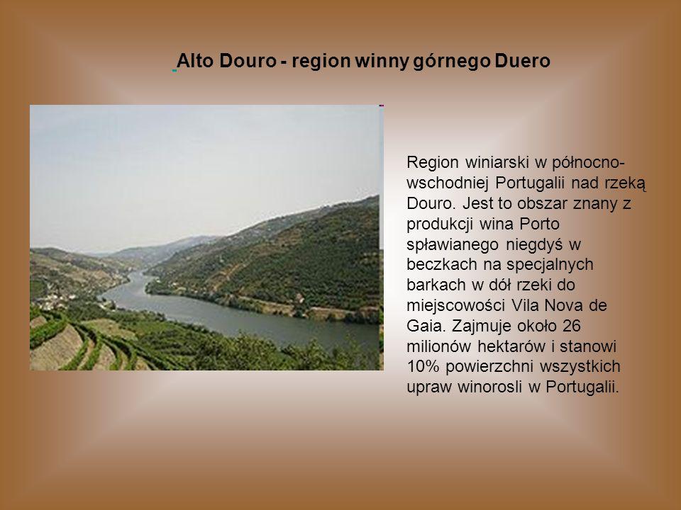 Alto Douro - region winny górnego Duero Region winiarski w północno- wschodniej Portugalii nad rzeką Douro. Jest to obszar znany z produkcji wina Port